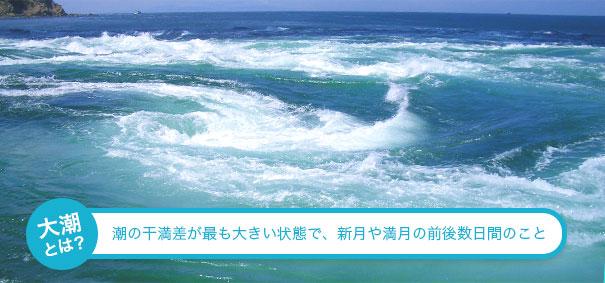 潮見 表 徳島